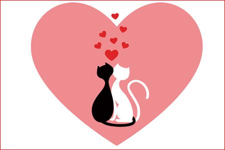 得意な恋愛アプローチがわかる「恋の動物占い」