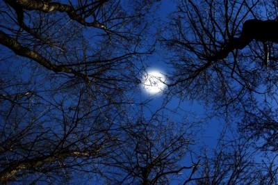 【心理テスト】秋夜過ごし方でわかるお疲れ度