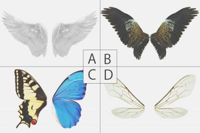 【心理テスト】欲しい羽でわかる目立ちたい願望