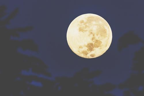 4月22日は蠍座の満月 悪い習慣を手放して根本から変容しよう!