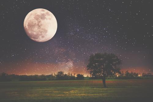 5月22日は射手座のウエサク満月 恐れを手放して、理想を追う強さを手に入れよう!