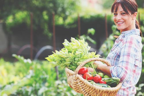 12星座【オーガニック好き】ランキング 牡牛座は無農薬野菜を家庭菜園で栽培!