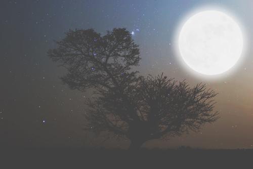 10月16日は牡羊座の満月 気後れする弱さを手放して、自分らしく生きよう!