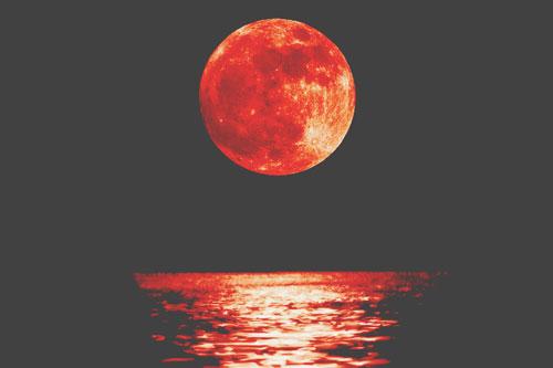 2月11日は獅子座の月食満月 自己否定を手放して、自分らしく輝こう!