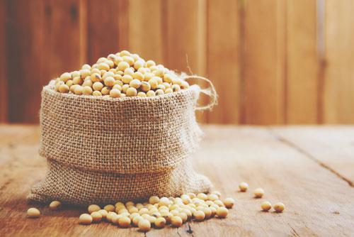 【心理テスト】大豆と聞いて何を連想するかでわかる、あなたの貯蓄意欲