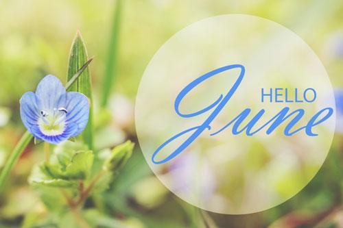 【6月の運勢特集】今月の運勢、恋愛運、開運アクションをチェック!