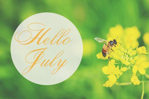 【7月の運勢まとめ】今月の運勢、恋愛運、開運アクションをチェック!