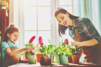 植物を育てる魔法の指【緑の指】診断
