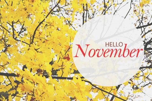 【11月の運勢まとめ】今月の運勢、恋愛運、開運アクションをチェック!