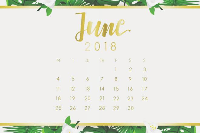 【6月の開運カレンダー】6月30日は「夏越の祓」神社で半年分の厄を落とそう!