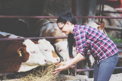 【10月の開運方位】ラッキー方位は「南西」、農業・酪農体験をして運気を上げよう!