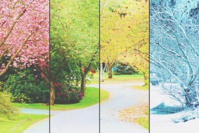 【心理テスト】好きな風景写真はどれ? 答えでわかるあなたが喜びを感じるとき