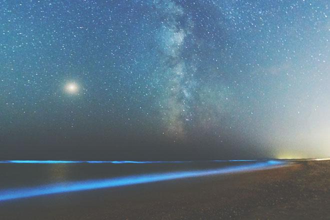 【火星占星術】10月4日~11月19日の火星的運勢 天秤座は愛想のよさがパワーアップ!