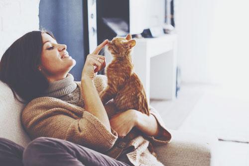 【心理テスト】拾ってきた猫がなく理由は? 答えでわかる男性にしてほしいこと